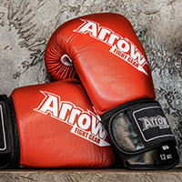 ARROW FIGHT GEAR